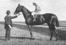 Cicero_(horse)