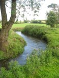 Delvin_River_at_Gibblockstown,_Co._Meath_-_geograph.org.uk_-_1764585